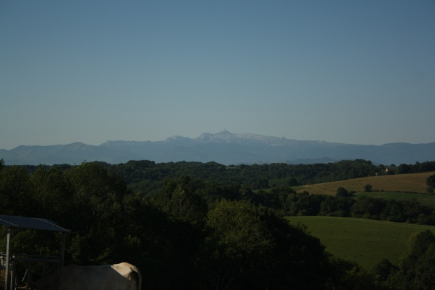 Day 29: first clear view of the Pyrenees!